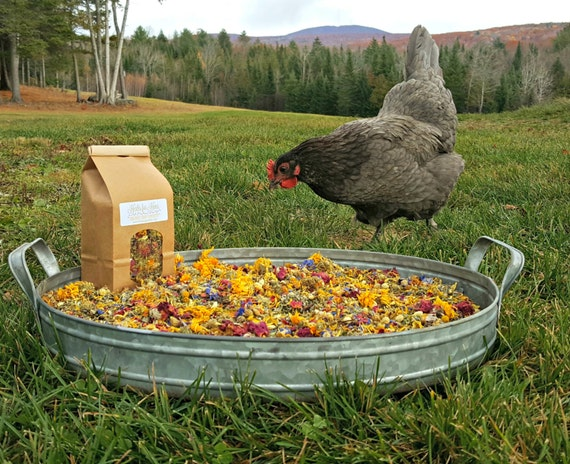 Herbs for Hens COOP CONFETTI™ Chicken Nesting Box Aromatherapy 1/4 lb 4 oz Organic Dried  Herbal Mint Lavender Rosebud Chamomile Calendula