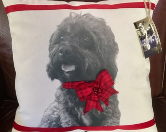 Personalized Christmas Pet Pillow on Canvas