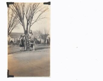 Women in Trees GIRLS Club playing Social Realism Photography modern vernacular photos