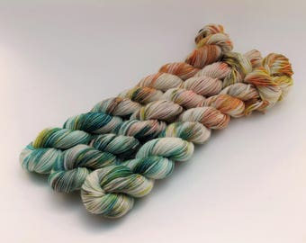 Variegated Minis, 20 Grams, 92 yards each, Work Horse Sock, Super Wash Merino Wool, Nylon, Quest