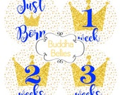 Little Prince Baby Month Stickers - Royal Blue Baby - Royals Baby Newborn Set - Baby Boy Crown Baby Shower - Baby Royalty Monthly Stickers -