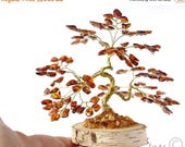 15% OFF Baltic Amber Bonsai Tree