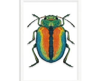 Rainbow Beetle A3 (297mm x 420mm) - Instant Download Only