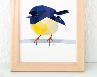 New Zealand tomtit, New Zealand bird art, New Zealand native birds, NZ artist,NZ Flora and fauna art, Bird wall art, Kiwiana, Kiwi wall art