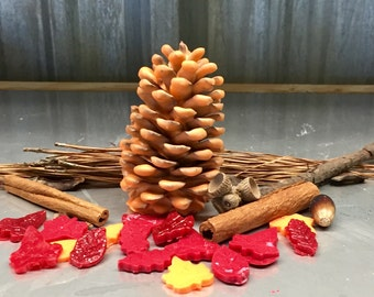 Gift Bag of Fragrant Wax Dipped Pinecone Firestarters/Potpourri NEW Quantity!