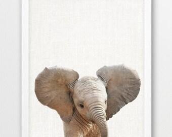 Elephant Print, Baby Elephant Photo, Africa Safari Animals, Nursery Wall Art, Cute Animal, Kids Room Print, Nursery Decor, DIY Printable Art