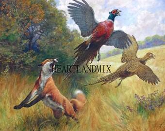 Vintage Fox and Pheasants Digital Download Printable Image wall art Illustation