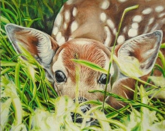 Baby Deer art - Nature artwork - Original art - Deer drawing - Deer art - Fawn art - Deer decor - Youthful art - Birthday gift, Artwork gift