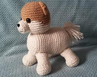 Boo : World's Cutest Dog