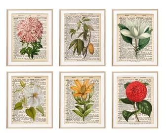 Vintage Botanical Print Set, Dictionary Page Print Floral Artwork, Book pages, Gift For Her, Bedroom Art Flower Decor, Bathroom Art Set of 6