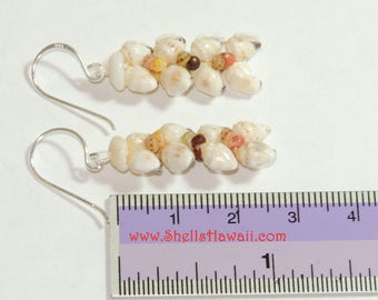 "1"" Kahelelani & Momi heliconia style shell earrings /Niihau shells"