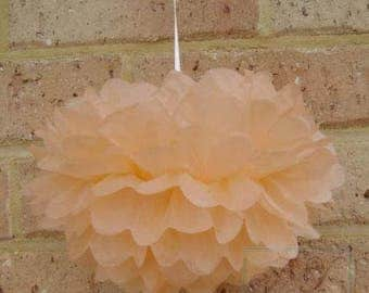 6x Mix-Size Peach Tissue Paper Pom Pom   Hanging Decoration - Wedding - Baby Shower - Party - Engagement Bridal Shower