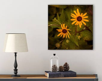 Country Wall Art - Black Eyed Susan - Flower Wall Decor - Canvas Print - Yellow Flower Print - Bathroom Photography - Rustic Wall Decor