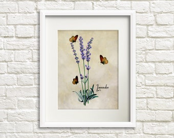 Lavender with Butterflies - Flower Artwork, Floral Art Prints, French Country Style, Cottage Chic Style Room Decor, Farmhouse Chic Style Art