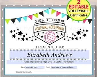 volleyball awards ideas  Volleyball award | Etsy