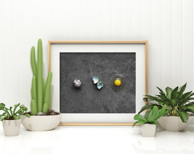 Featured listing image: quail egg v. three // food photography print // kitchen decor // kitchen wall art  // dining room wall art // rustic wall art // egg print