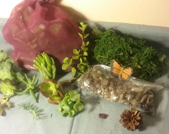 DIY Fairy garden starter kit