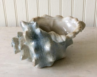 Vintage Ceramic Blue Seashell Planter, Conch Shell, Coastal, Nautical, Tropical, Beach, Cottage Decor
