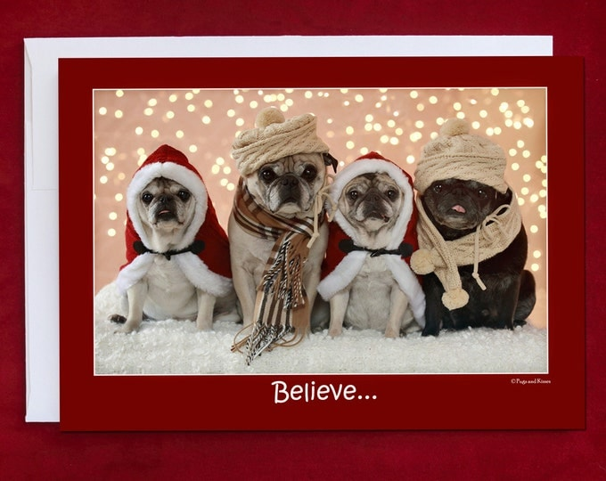 Funny Holiday Card - Pug Holiday Card - Believe - 5x7