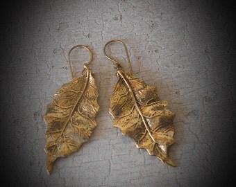 Leaf or Feather Brass earrings .·*·. Tribal earrings