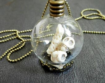 Terrarium shadowbox globe glass dome curiosity cabinet