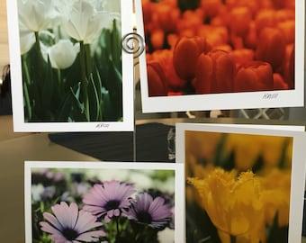 Flowers III Notecards