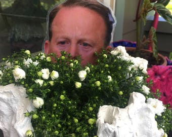 Garden-Spicer, parody, garden deco, spicer bush, two different sizes to hide into small or bigger bushes, Sean Spicer