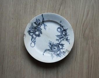 35% off sale-antiques-antique plate ' 800 decorum Monreale-Richard-white porcelain with blue decor-fruits and leaves