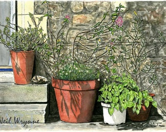 "Garden Art prints - ""Miniature Garden"" - Watercolour Plants Art Garden Pots Illustration Drawing"