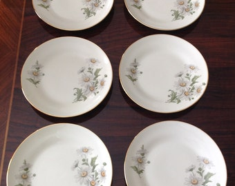 Richard Ginori Daisy 7 3/4 Inch Plates...Set of 6
