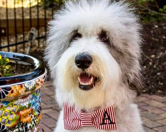Dog Bow Tie Red & White Stripes || Personalized Puppy Bow || Custom Pet Gift by Three Spoiled Dogs