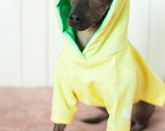 Delicate Jersey Hoodie spring hoodie small dog - Dog Hoodie - Dog Clothing - Jersey Hoodie