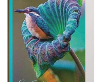 bird-birthday card-birthday card-turquoise-floral-bird in flower-exquisite-get well-positive inspiration