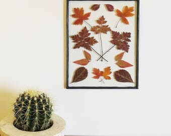 Autumn Assorted Botanical - Pressed, dried leaves are placed between glass, sealed and framed in leadlight