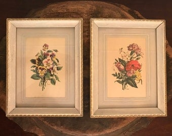 Vintage Chirat Framed Botanical Reproduction Prints Set of 2