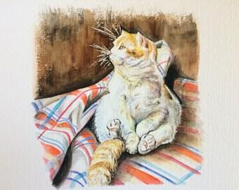 Dodu, le chat