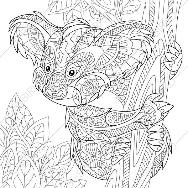 Adult Coloring Pages Koala Bear Zentangle Doodle