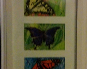 Trio of Hand-painted Butterflies