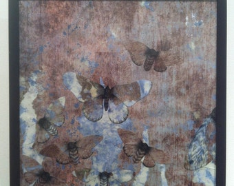 Butterflies wall painting