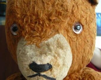 Teddy Bear Vintage