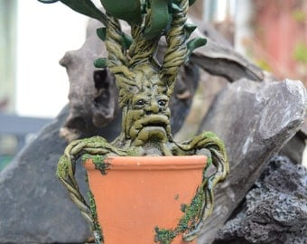 OOAK small hand made Mandrake inspired  by Harry Potter