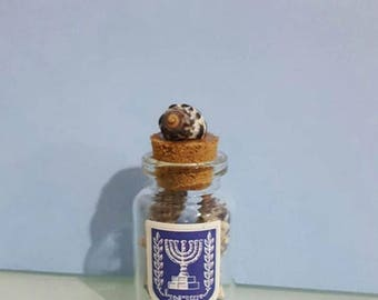 Israeli Emblem glass vial with seashells
