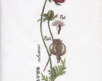 Cross-stitching poppies on canvas white cheesecloth - new