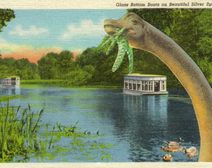Prehistoric Dinosaur Art Collage, Retro Florida Postcard Artwork