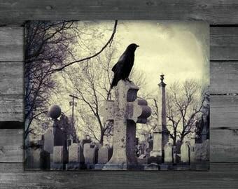 Aged Vintage Colors, Crow Decor, Gothic Wall Art, Blackbird, Rook, Old Cross, Graveyard, Bird, Corvidae - The Cross Sitter