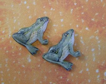 Frog Embellishment set of 2