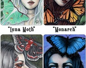 Moths and Butterflies Limited Edition ACEO Print Luna Monarch Butterflies Robin Moth Blue Morpho Fantasy Fairy Artist Trading Cards ATC