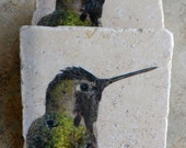 Hummingbird Stone Photo Coasters - Most Popular Hummingbird Gifts - Green Black Hummingbird Coasters - Ready to Ship