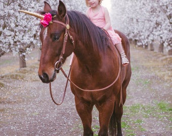 Unicorn horn pink gold accessory rocking horse carousel horse pony clip photography prop