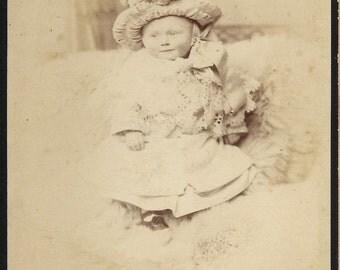 Antique Cabinet Photograph  Little Fancy Pants